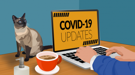 Person reading Covid-19 updates online
