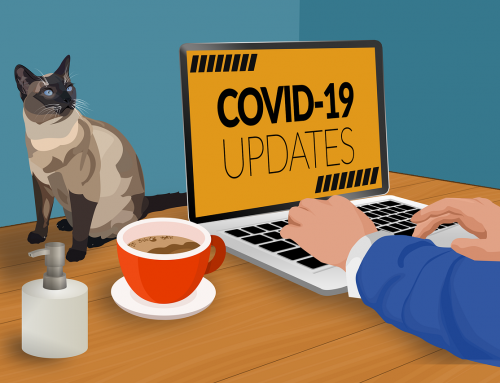 Coverage: Covid-19 News and Information from State-Backed Outlets